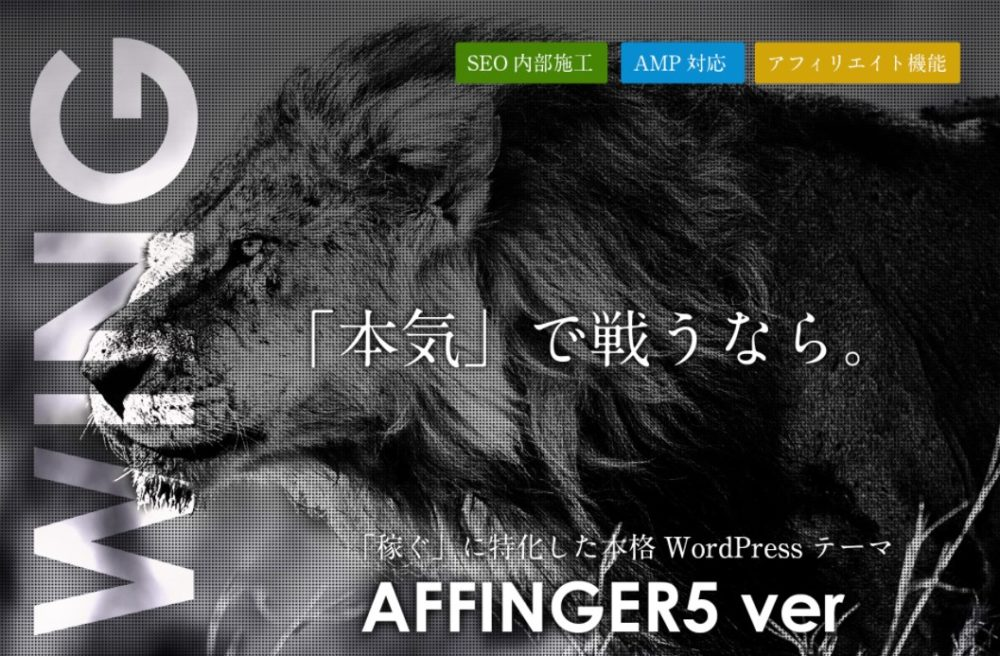 AFFINGER5をSTINGER STOREから購入する手順【画像付き】